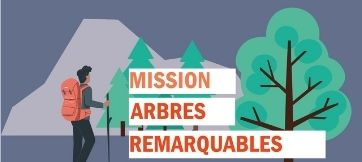 Remarkable Trees Mission